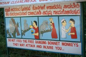 Assault by monkey